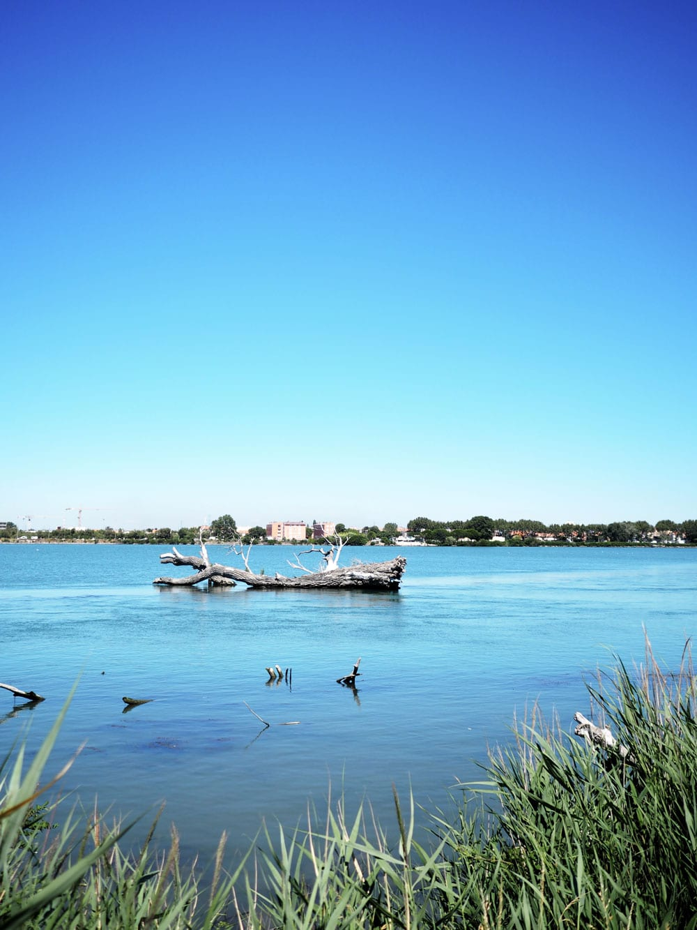 Style&Minimalism | Travel | Postcards From The Camargue, France