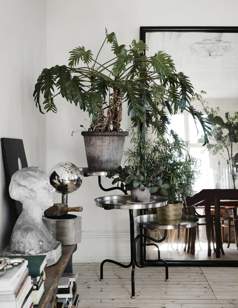Indoor plants, display table and large mirror | Home of Artilleriet's Owners