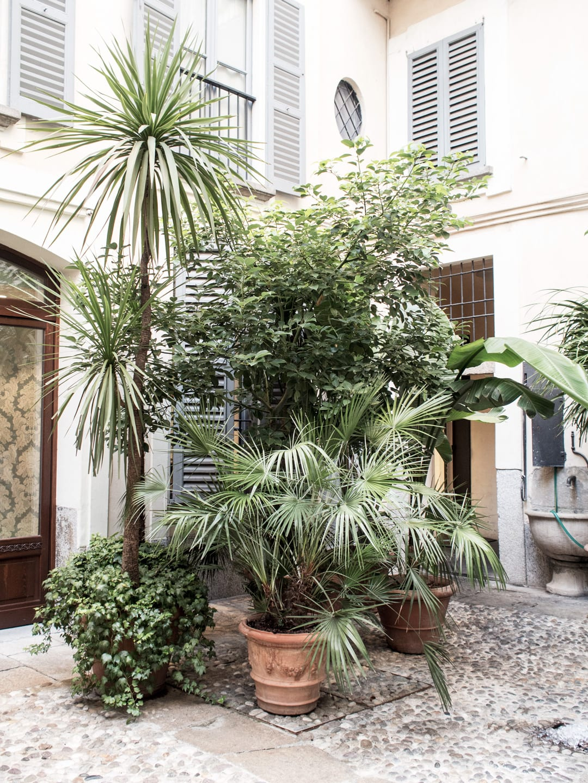 Milan City Guide | Dolce e Gabbana Atelier