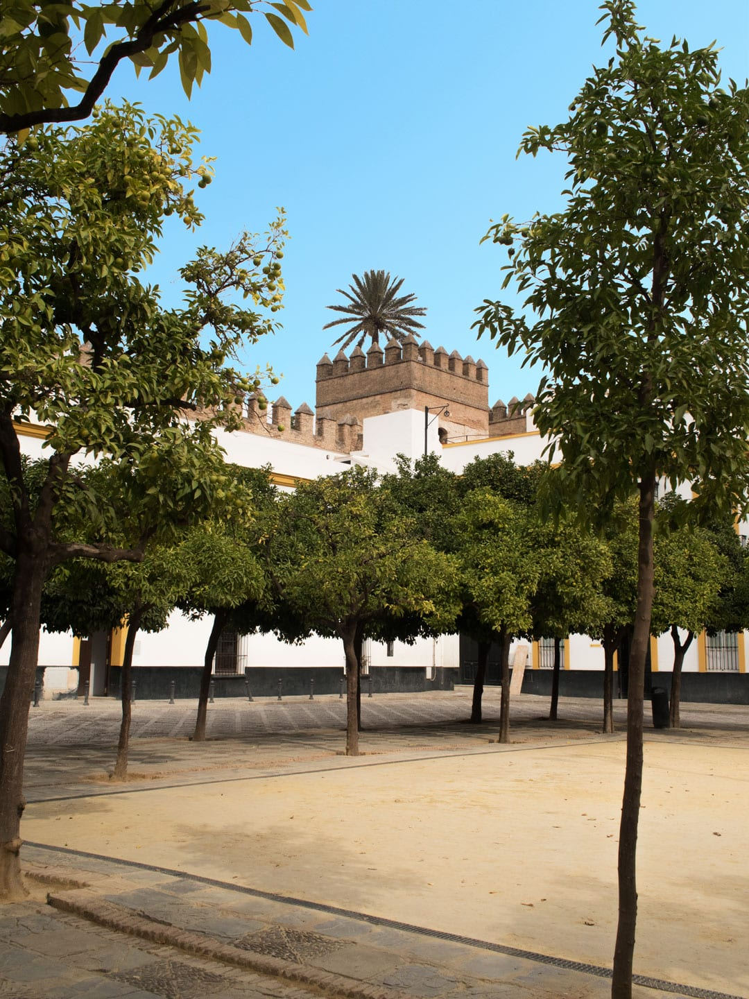 Seville City Guide