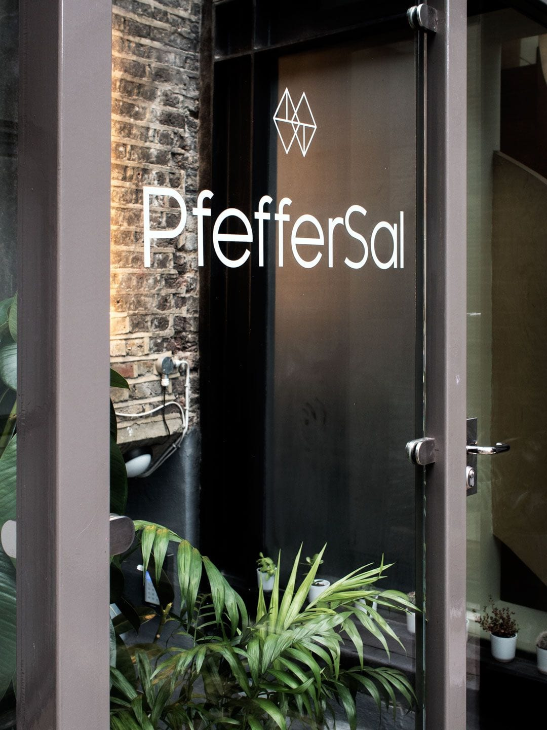 Pfeffer Sal 'Gently Does It' Facial Treatment